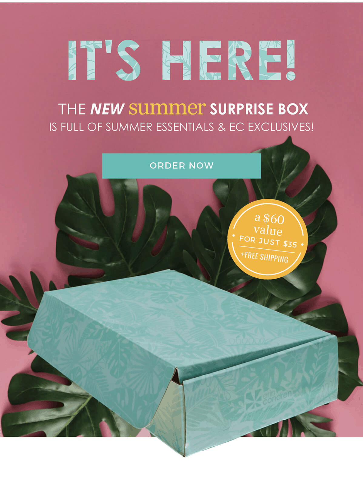 Erin Condren Summer 2019 Seasonal Surprise Box Available Now + Spoiler!