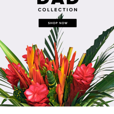 The Bouqs Father's Day Sale: Get 20% Off Sitewide!