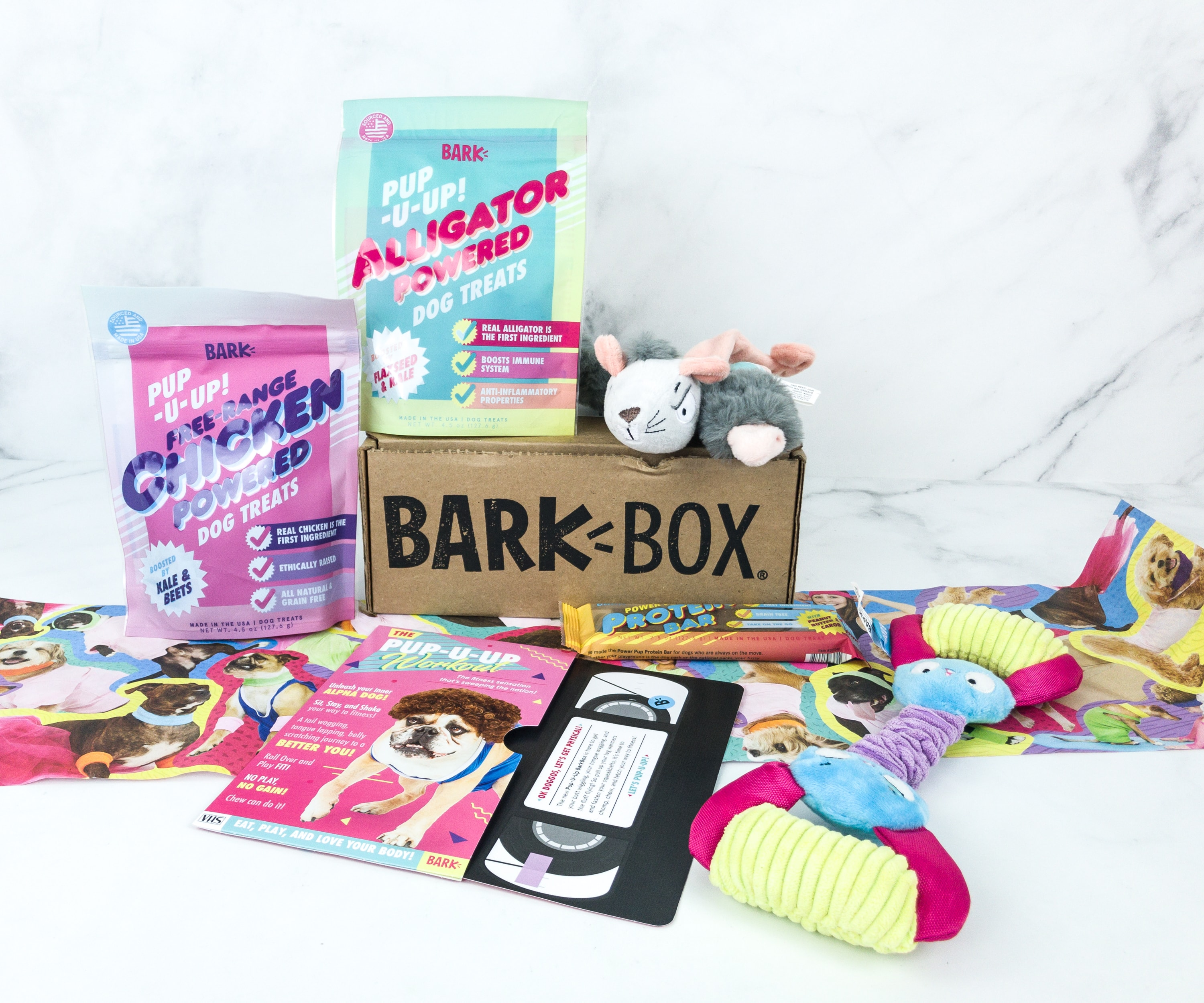 Barkbox June 2019 Subscription Box Review + Coupon