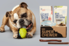 BarkBox Super Chewer Coupon: Get 50% Off Your First Month!