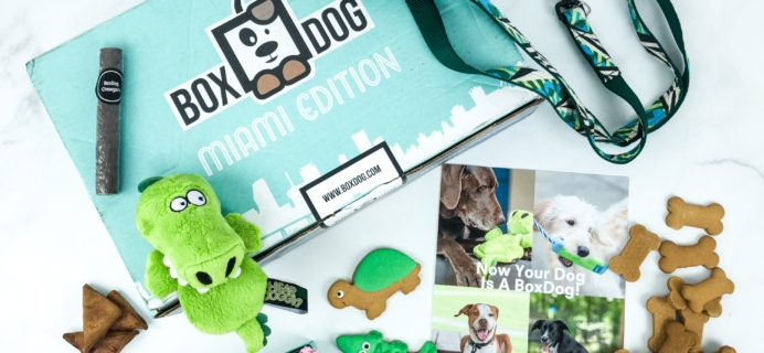 BoxDog Coupon: Get 40% Off!