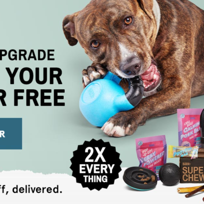 BarkBox Super Chewer Coupon: Double Your Box First Month!