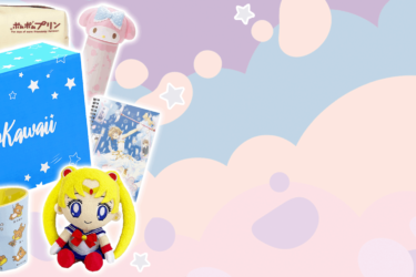 SoKawaii Black Friday Deal: Get up to $60 off your subscription!