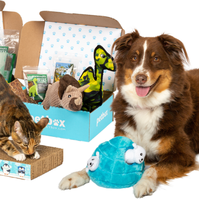 PetBox Coupon: Get 50% Off!