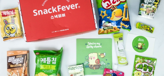 June 2019 Snack Fever Subscription Box Review + Coupon – Original Box!