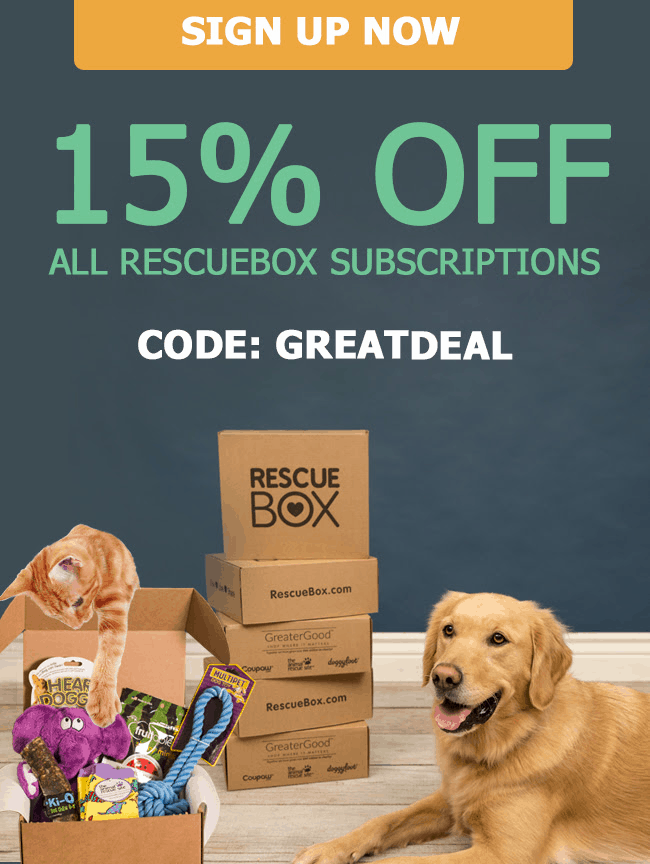 Rescue Box Coupon: Get 15% Off!