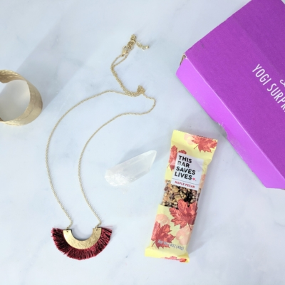 Yogi Surprise Jewelry Box July 2019 Subscription Review + Coupon