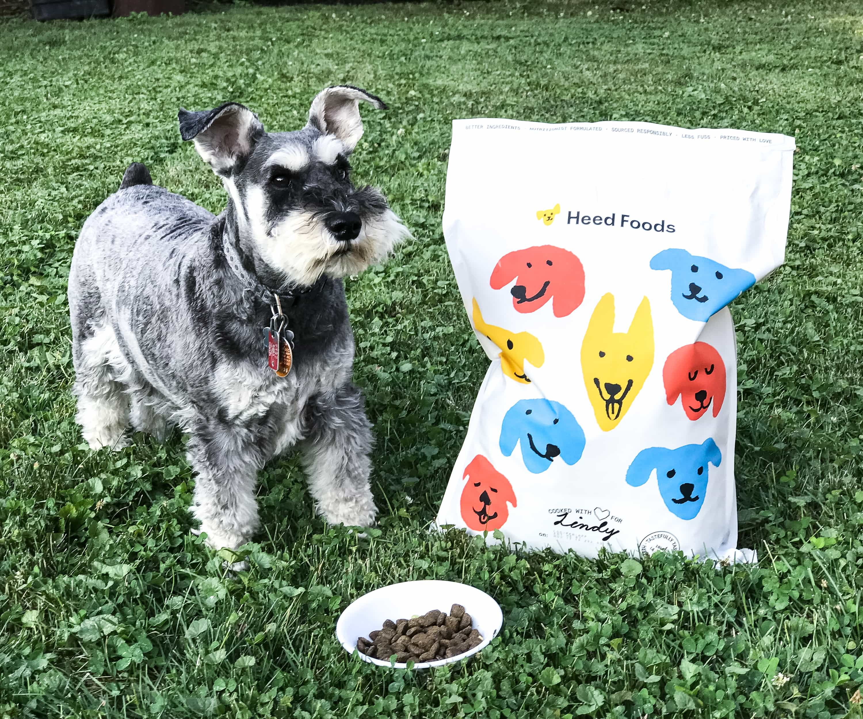 Heed Foods Fresh Salmon & Superfoods Kibble is now available + 20% Off Coupon!