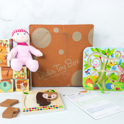 Didis Toy Box August 2019 Subscription Box Review & Coupon