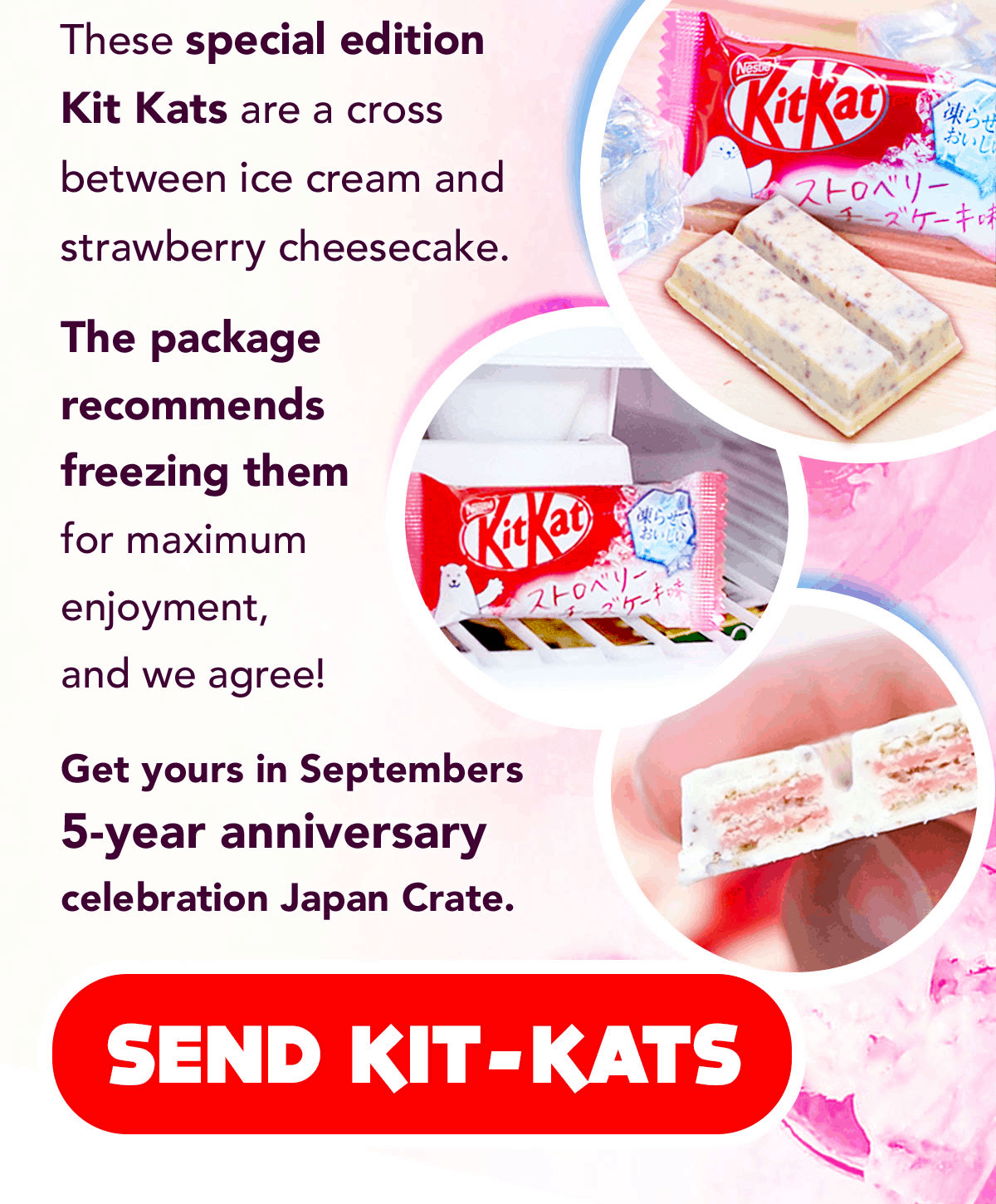 Japan Crate September 2019 Spoiler #2 & Coupon! - hello subscription