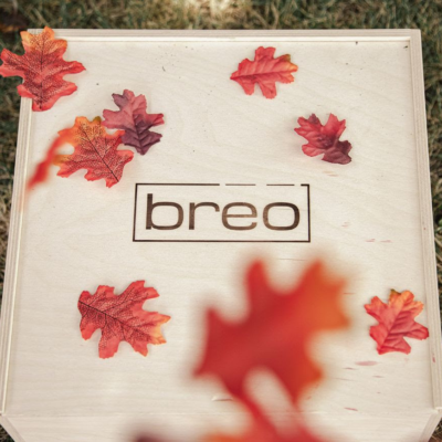 Breo Box Fall 2019 Spoiler #3 + Coupon!