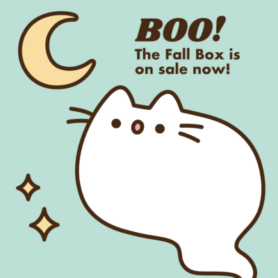 Pusheen Box Fall 2019 Spoiler #1!