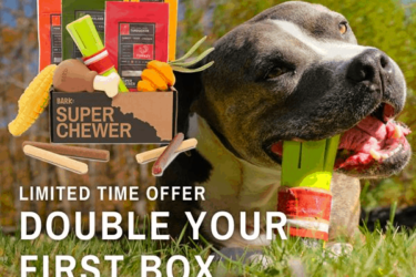 Super Chewer Pre Black Friday Coupon: Double Your Box First Month!