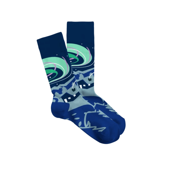 Sock Fancy Winter 2019 Seasonal Box Full Spoilers!