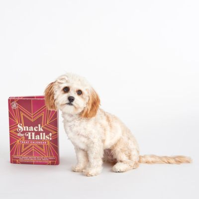 2019 BarkBox Dog Treat Advent Calendar Available Now!