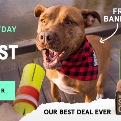 Super Chewer CYBER MUTTDAY Coupon: First Box $5 + FREE Bandana + Thanksgiving Theme Guarantee Box!