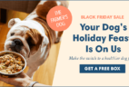 Pup Parents Don't Miss This! The Farmer's Dog Black Friday Deal – Get your first box FREE!