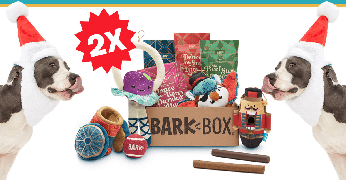 BarkBox Before Black Friday Flash Sale: Double Your First Box for FREE!