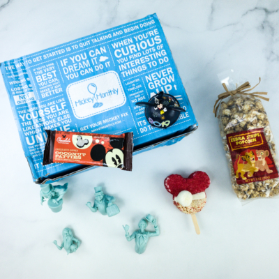 Mickey Monthly November 2019 Subscription Box Review + Coupon