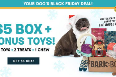 BarkBox Black Friday Sale: $5 First Box + FREE Extra Toy!