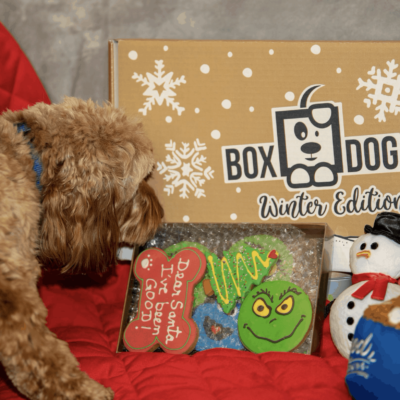BoxDog Holiday Deal: First Box For $10!