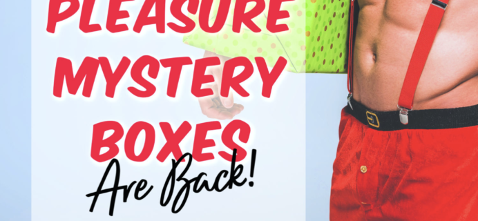 Bawdy Bookworms Cyber Monday Deal: Pleasure Mystery boxes are back ONE DAY ONLY! {NSFW}