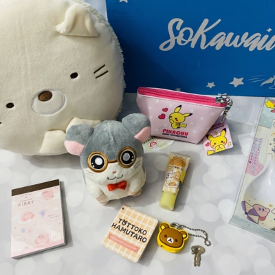 SoKawaii November 2019 Subscription Box Review *
