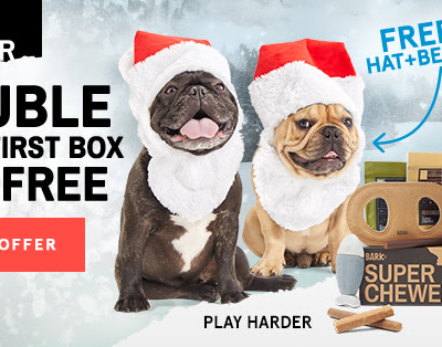 Super Chewer Holiday Coupon : Double Your Box First Month!