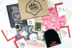 Geek Gear World of Wizardry November 2019 Subscription Box Review & Coupon