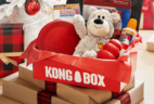 KONG Box – Review? Dog Toy Subscription!
