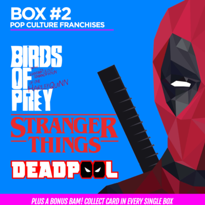 The BAM! Pop Culture Box February 2020 Franchise Spoilers!