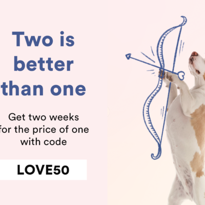 Spot and Tango Valentine's Day Sale: Get 50% Off!