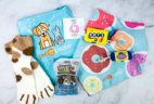Pet Treater Cat Pack February 2020 Subscription Box Review + Coupon!