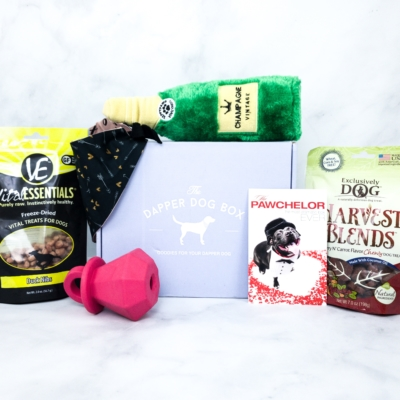 The Dapper Dog Box February 2020 Subscription Box Review + Coupon