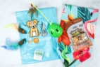 Pet Treater Cat Pack March 2020 Cat Subscription Review + Coupon!