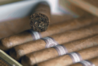 Amazing Clubs Cigar of the Month Club – Review? Premium Cigar Subscription!