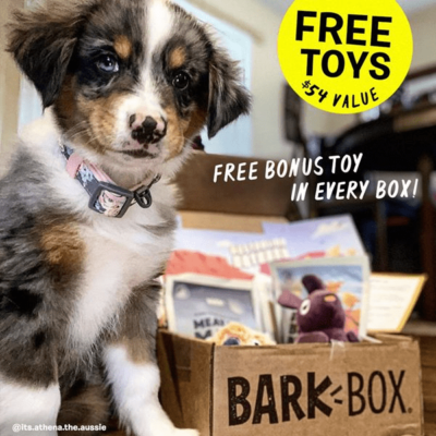 BarkBox Coupon: FREE Extra Toy Every Month!