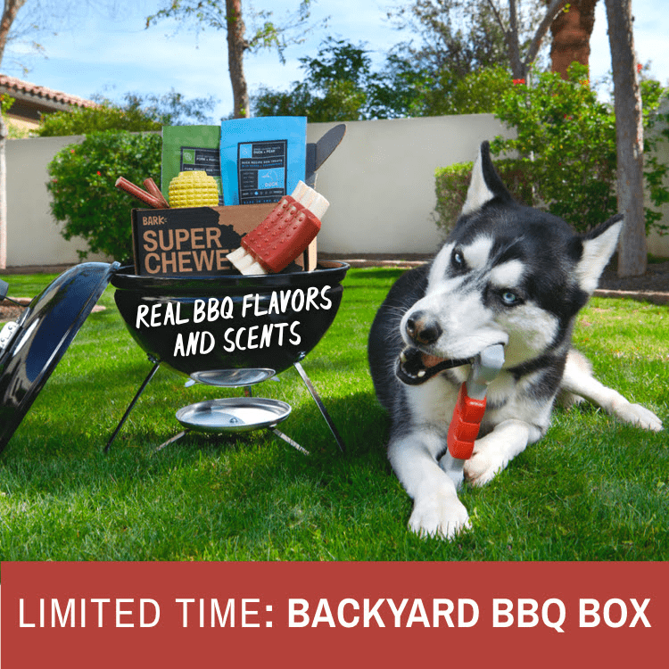 BarkBox Super Chewer Coupon: Get 50% Off Your First Month + Limited Edition American BBQ Theme!