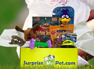 Surprise My Pet – Dog