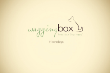 Wagging Box