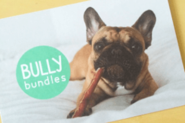 Bully Bundles