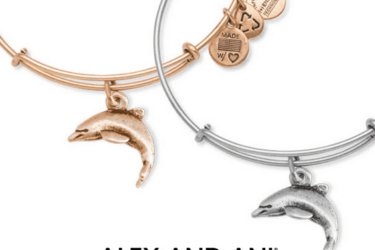 Alex + Ani Bangle of the Month