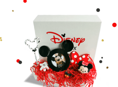 WDW in a Box – Wishes Monthly