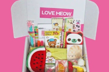 loveMeow Kawaii Box