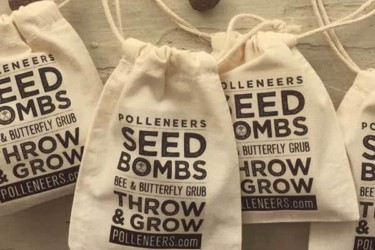 Williams Honey Farm Monthly Seed Bomb Subscription