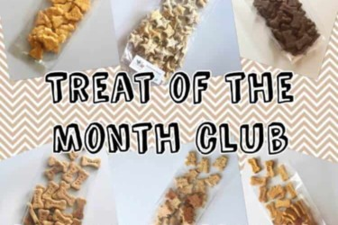 2 Little Bostons Dog Treat of the Month Club