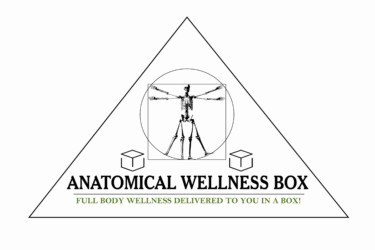 Anatomical Wellness Box