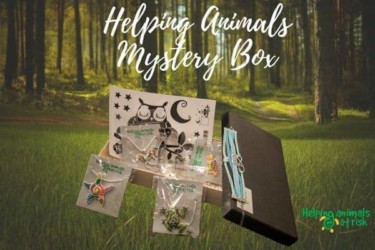 Helping Animals Mystery Box