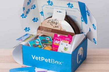 VetPet Box – Cat and Kitten