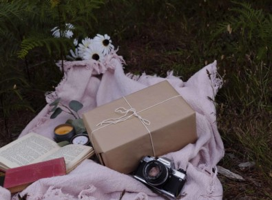 The Book Forest Crate